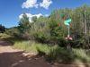 teller-county-colorado-cheap-land-
