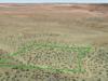 seller-financed-land