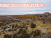 very-cheap-seller-financed-land-in-nm