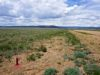 cheap-land-in-park-county-