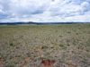 low-down-seller-financing-park-county-lot