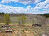 -jefferson-co-land-for-sale