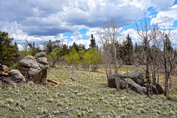 Colorado Land For Sale By Owner Low Down Seller Financing